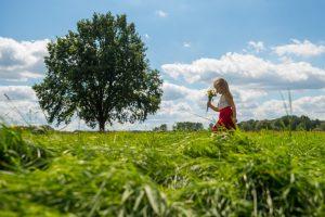 1_wiosna_drzewo-zycia_fot-marta-ankiersztejn